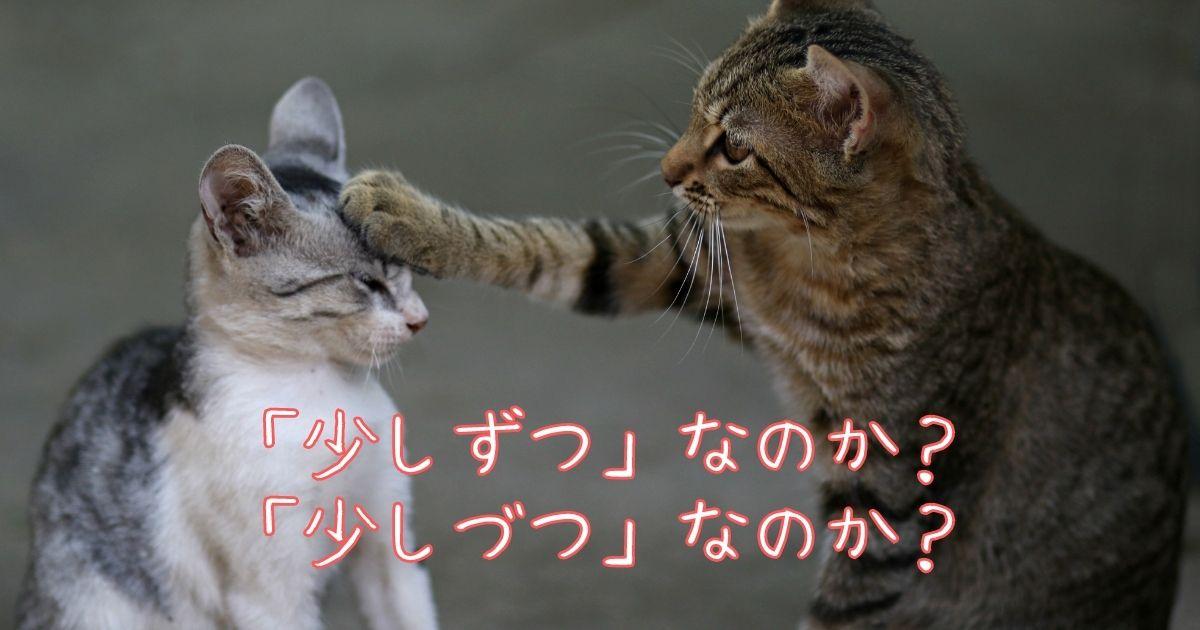 「少しずつ」なのか「少しづつ」なのか?正しい日本語は?